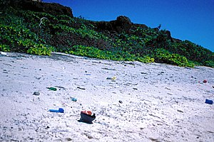 Plastic pollution - A photo of Plastic waste on Henderson Island