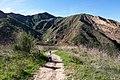 Hiking Towsley Canyon (2323957269).jpg
