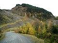 Hillside in Loch Ard Forest - geograph.org.uk - 1036752.jpg