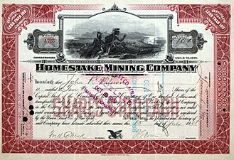 Homestake Mining Company - Share of the Homestake Mining Company, issued 15. July 1908