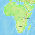 Hominoidea střední miocén Afrika.jpg