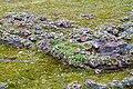 Honmachi 15-chome, Higashiyama Ward, Kyoto, Kyoto Prefecture 605-0981, Japan - panoramio (2).jpg