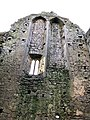 Hore Abbey, Caiseal, Éire - 32711802228.jpg