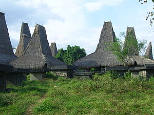Sumba - Traditional Sumbanese houses near Bondokodi, West Sumba