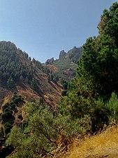 Hoya del Gamonal.jpg