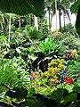 Hunte's Gardens.jpg