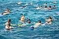 Hurghada snorkelling - Egypt - panoramio.jpg