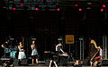 I-Wolf and The Chainreactions Donauinselfest 2014 45.jpg