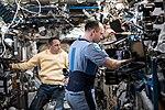ISS-54 Anton Shkaplerov and Alexander Misurkin work inside the Destiny lab.jpg