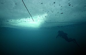 Ice diving - Under the ice - view from below