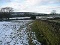 In Fields East of Foulridge - geograph.org.uk - 1165856.jpg