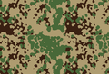 Indian Flecktarn.png
