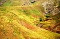 Iran - Taleghan - Dizan Parachan Road - panoramio.jpg