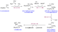 Isoleucine biosynthesis.png