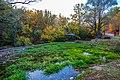 Izvor reke Moravice 00.jpg