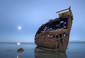 Talley's Group - The rusting hull of the Janie Seddon