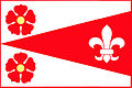 Jankov CB CZ flag.jpg
