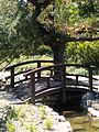 Japanese Garden. Bridge over the channel. - Margaret Island, Budapest, Hungary.JPG