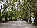 Jardim Cordoaria 2 (Porto).jpg