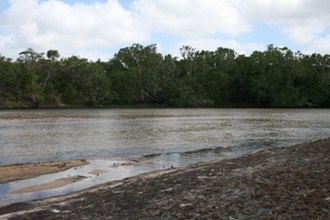 Cape York Peninsula - Jardine River, northern Cape York Peninsula, at the base of Cape York itself.