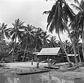 Javaanse kampong in de Van Drimmelenpolder in Nickerie, Bestanddeelnr 252-5529.jpg