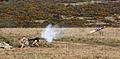 Javelin Firing during Firepower Demonstration MOD 45150012.jpg
