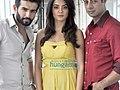 Jay Bhanushali, Surveen Chawla, Sushant Singh Hate Story 2 talk -2.jpg