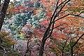 Jingo-ji (6920601898).jpg