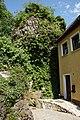 Königstein AS 004.jpg