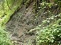 Kümmelsbach 250710.jpg