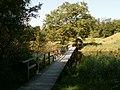 Kładka przez jeziorko Borgeso - panoramio.jpg