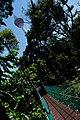 KL Forest Eco-Park Canopy Walk 2.jpg