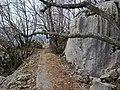 Kamenjak - panoramio - ottori1982 (1).jpg