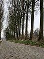 Kasseiweg in Kortessem - panoramio.jpg