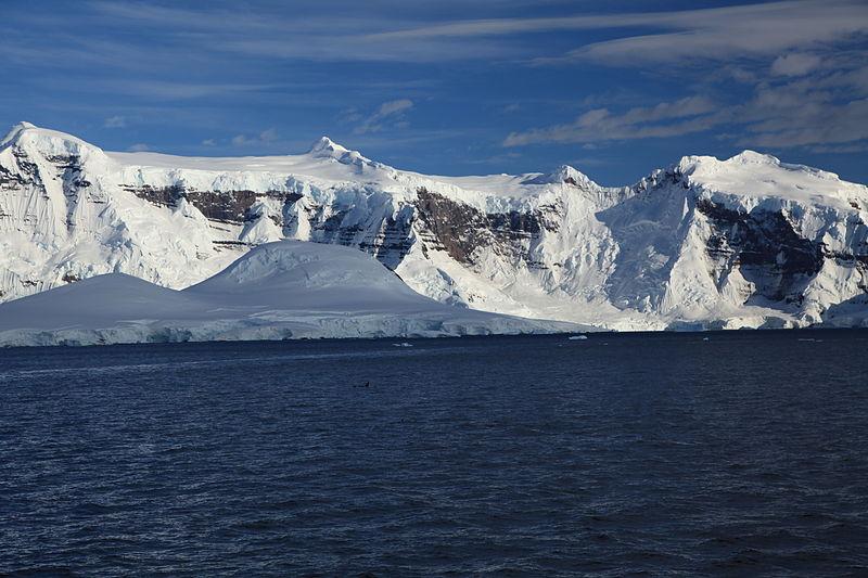 File:Killer Whales in the Gerlache Strait, Antarctica (6086937790).jpg