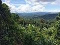 Kinabalu Parks area near Langanan Waterfalls.jpg