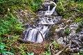Kleines Wiesental - Klemmbach-Wasserfälle Bild 2.jpg