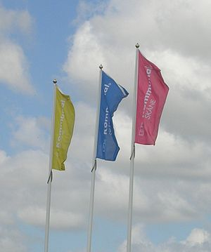 Swedish Municipal Workers' Union - Union flags outside the Kommunal headquarters