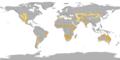 Koppen World Map BSh-BSk without legend.png