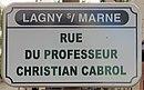 L3092 - Plaque de rue - Rue du Professeur Christian Cabrol.jpg