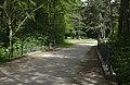 Lainzer Tiergarten (1) IMG 1511.jpg