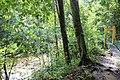 Lambir Hills Hike - panoramio.jpg