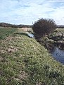Land drain - geograph.org.uk - 537011.jpg