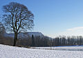 Landscape (2255452209).jpg