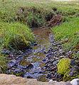 Landscape of Bjelusa - 7408.CR4.jpg
