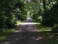 Lane from Street court - geograph.org.uk - 944640.jpg
