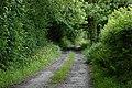 Lane heading towards Esgair - geograph.org.uk - 884604.jpg
