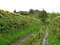 Laneway at Crockdun - geograph.org.uk - 171272.jpg