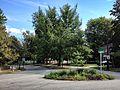Lanier Boulevard Parkway.JPG