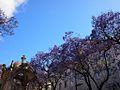 Largo do Carmo (14216807727).jpg